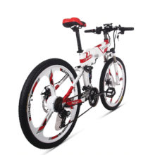 Electric Bicycle Watertight Frame Inside Li-on